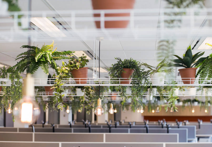 office planters with lights